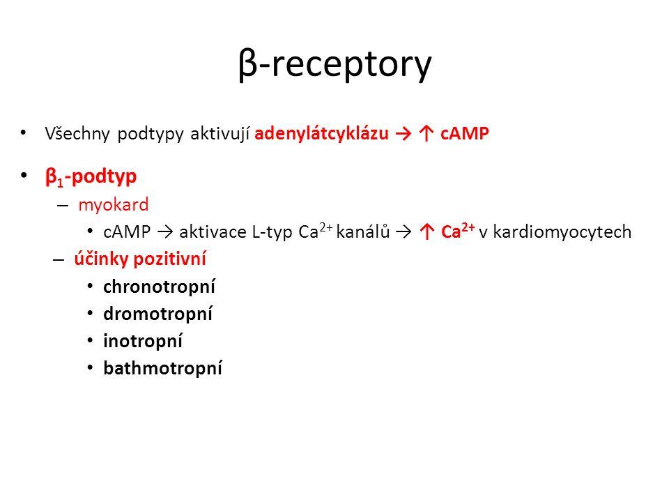 β-receptory Všechny podtypy aktivují adenylátcyklázu → ↑ cAMP. β1-podtyp. myokard. cAMP → aktivace L-typ Ca2+ kanálů → ↑ Ca2+ v kardiomyocytech.
