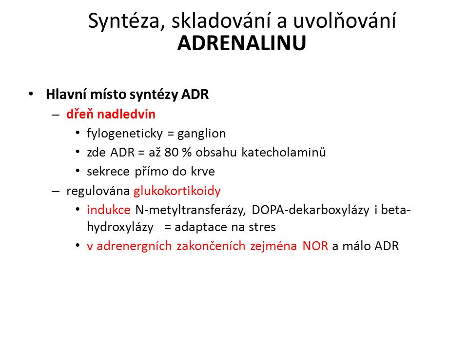 Syntéza, skladování a uvolňování ADRENALINU