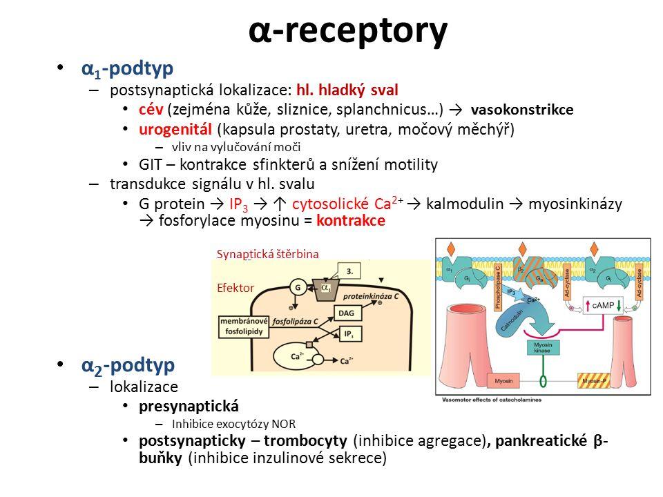 α-receptory α1-podtyp α2-podtyp