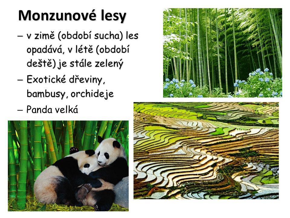 Monzunové lesy v zimě (období sucha) les opadává, v létě (období deště) je stále zelený. Exotické dřeviny, bambusy, orchideje.