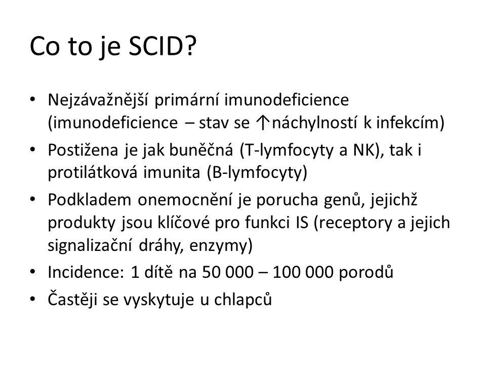 Co to je SCID Nejzávažnější primární imunodeficience (imunodeficience – stav se ↑náchylností k infekcím)