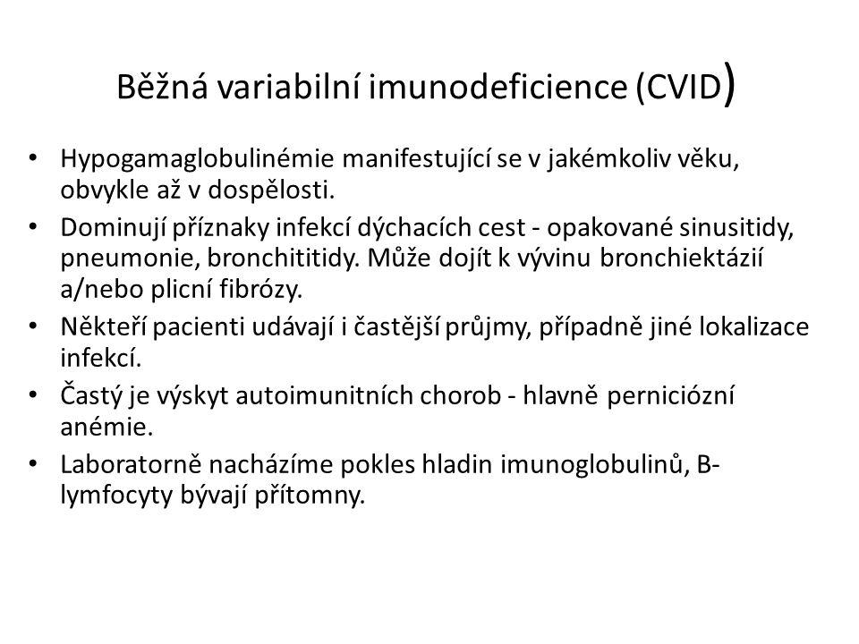 Běžná variabilní imunodeficience (CVID)