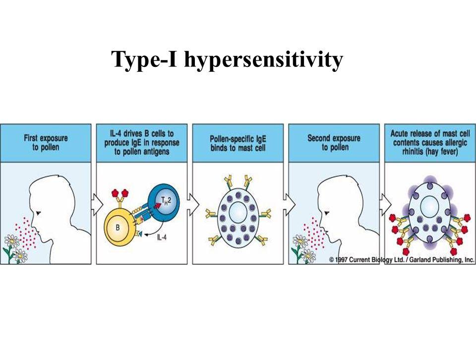 Type-I hypersensitivity