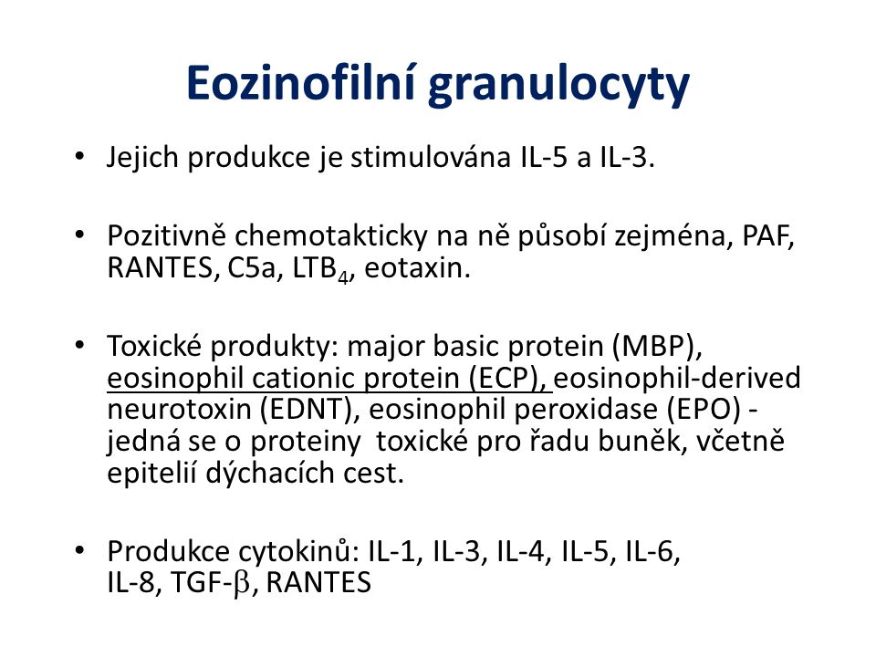 Eozinofilní granulocyty
