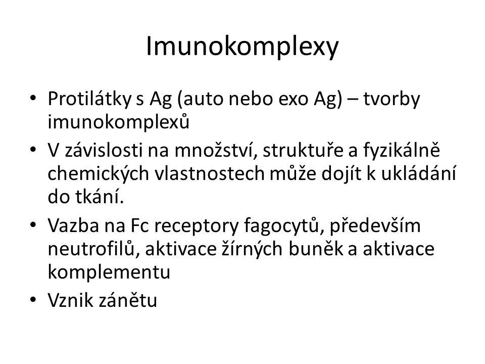 Imunokomplexy Protilátky s Ag (auto nebo exo Ag) – tvorby imunokomplexů.