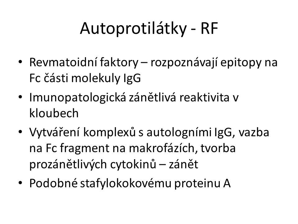Autoprotilátky - RF Revmatoidní faktory – rozpoznávají epitopy na Fc části molekuly IgG. Imunopatologická zánětlivá reaktivita v kloubech.