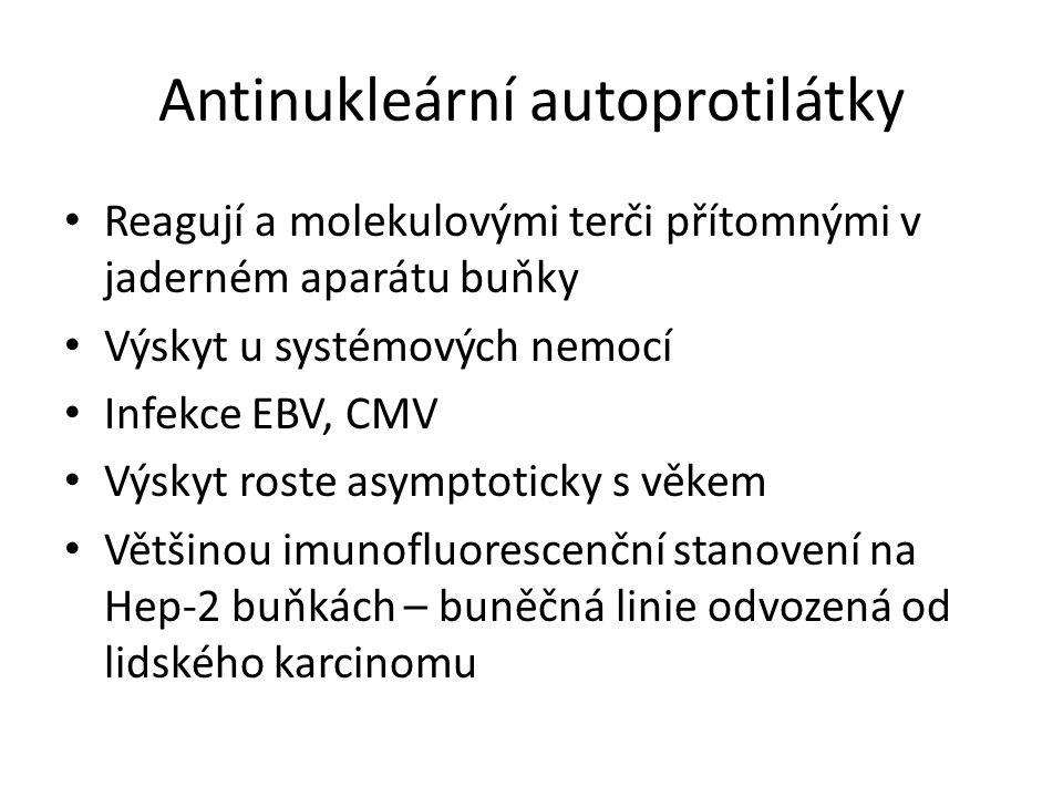 Antinukleární autoprotilátky