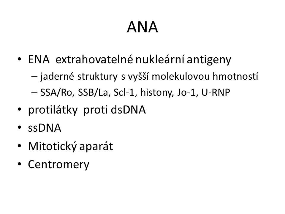 ANA ENA extrahovatelné nukleární antigeny protilátky proti dsDNA ssDNA