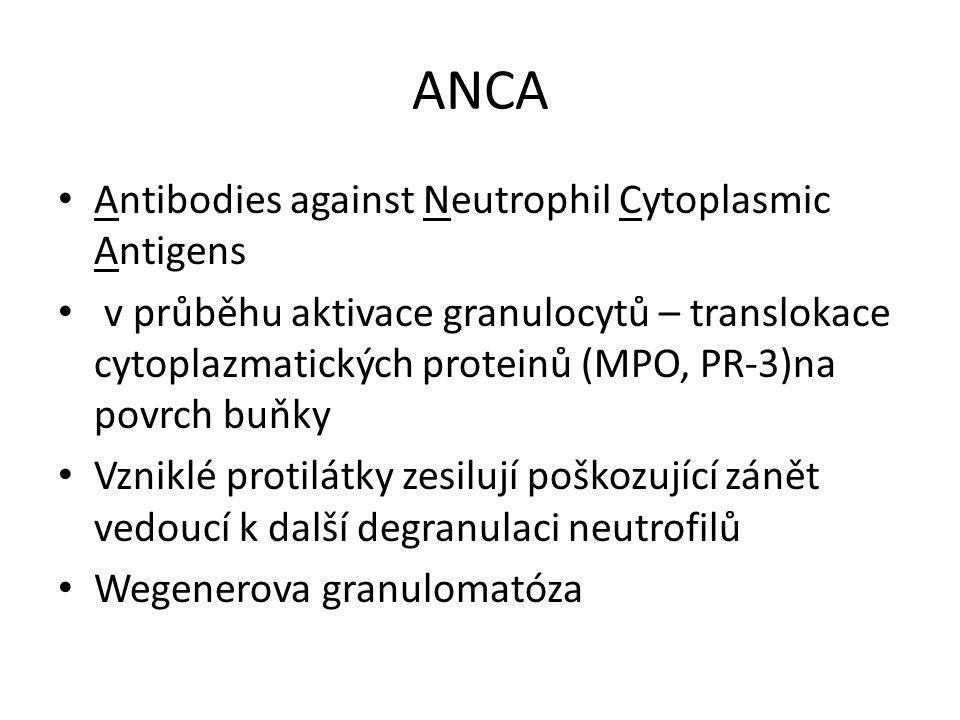 ANCA Antibodies against Neutrophil Cytoplasmic Antigens