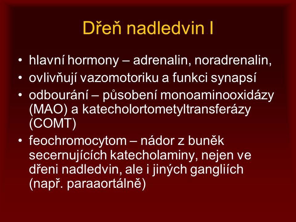 Dřeň nadledvin I hlavní hormony – adrenalin, noradrenalin,