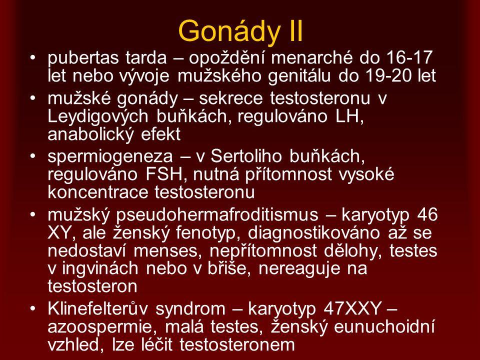 Gonády II pubertas tarda – opoždění menarché do 16-17 let nebo vývoje mužského genitálu do 19-20 let.