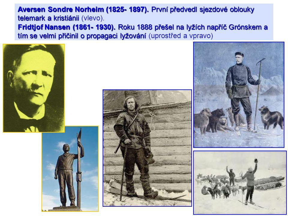 Aversen Sondre Norheim (1825- 1897)