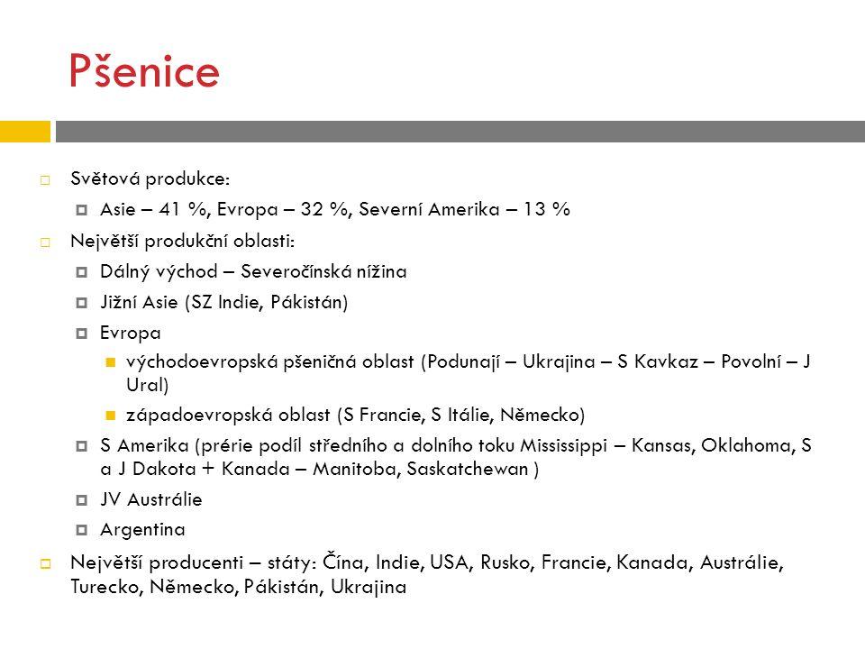 Pšenice Světová produkce: Asie – 41 %, Evropa – 32 %, Severní Amerika – 13 % Největší produkční oblasti: