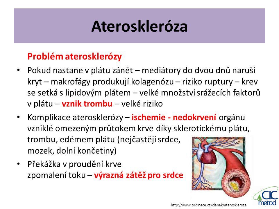 Ateroskleróza Problém aterosklerózy