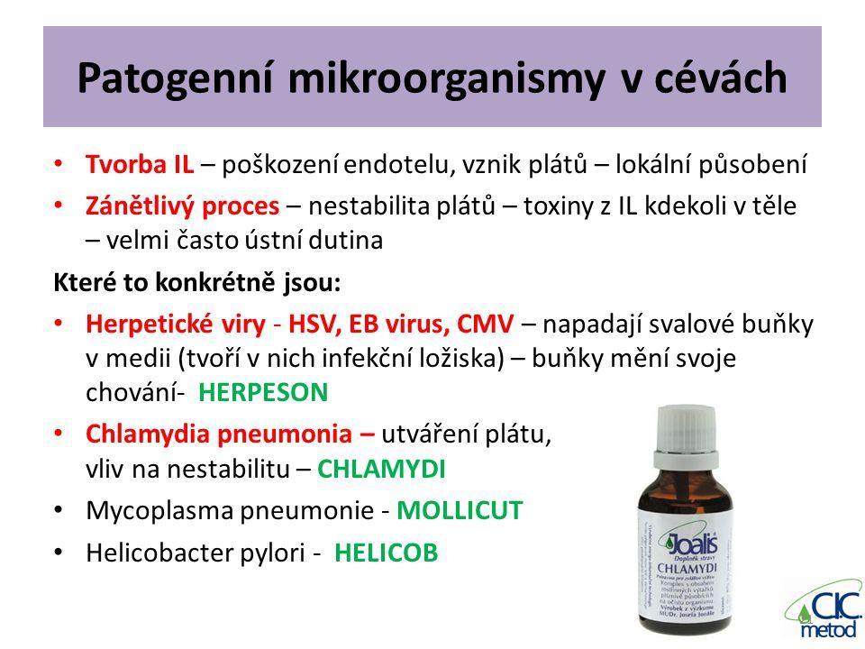Patogenní mikroorganismy v cévách