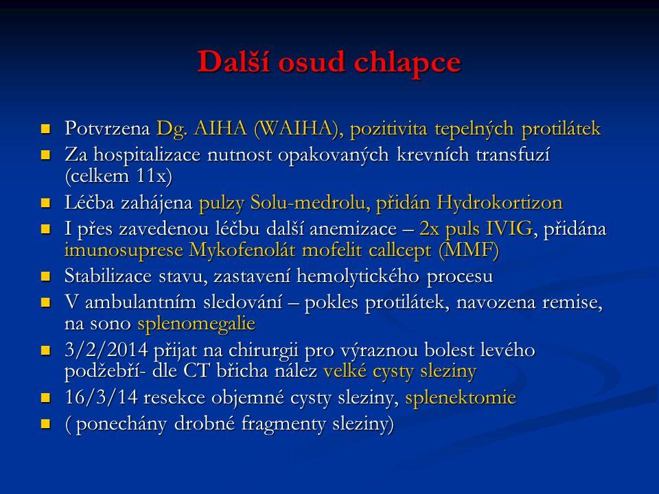 Další osud chlapce Potvrzena Dg. AIHA (WAIHA), pozitivita tepelných protilátek. Za hospitalizace nutnost opakovaných krevních transfuzí (celkem 11x)