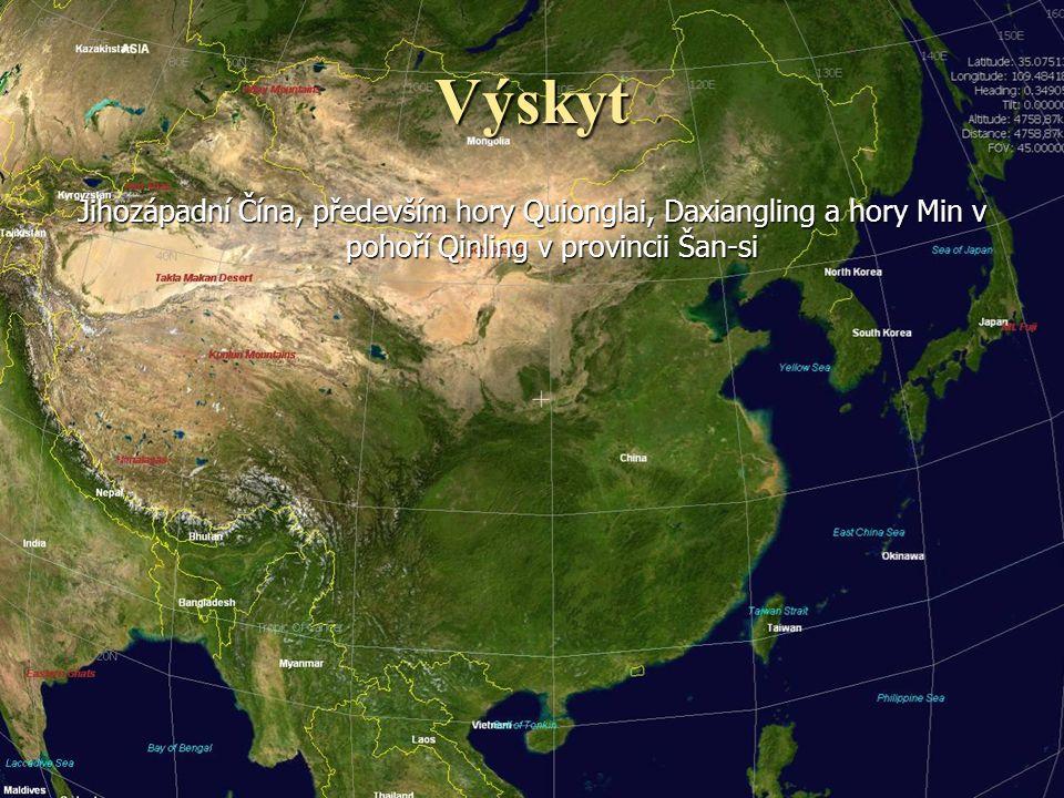 Výskyt Jihozápadní Čína, především hory Quionglai, Daxiangling a hory Min v pohoří Qinling v provincii Šan-si.