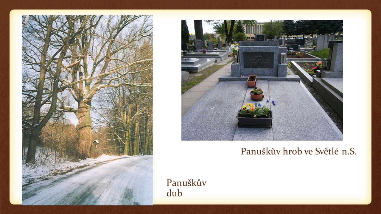 Panuškův hrob ve Světlé n.S.