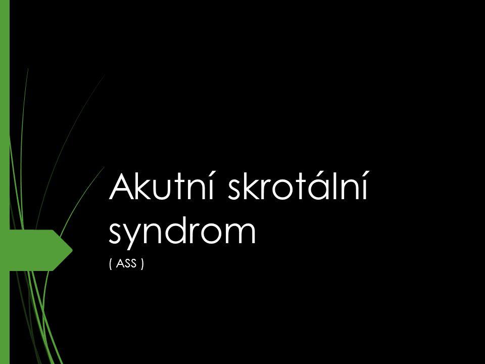 Akutní skrotální syndrom