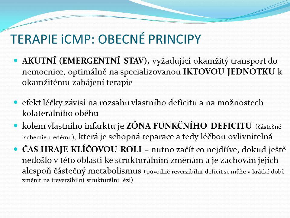 TERAPIE iCMP: OBECNÉ PRINCIPY