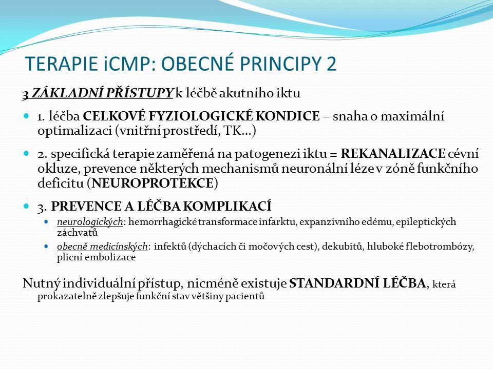 TERAPIE iCMP: OBECNÉ PRINCIPY 2