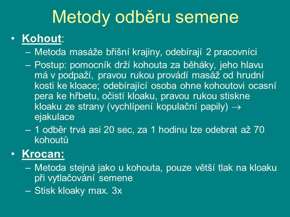Metody odběru semene Kohout: Krocan: