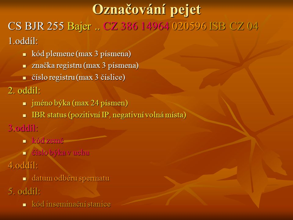 Označování pejet CS BJR 255 Bajer .. CZ 386 14964 020596 ISB CZ 04