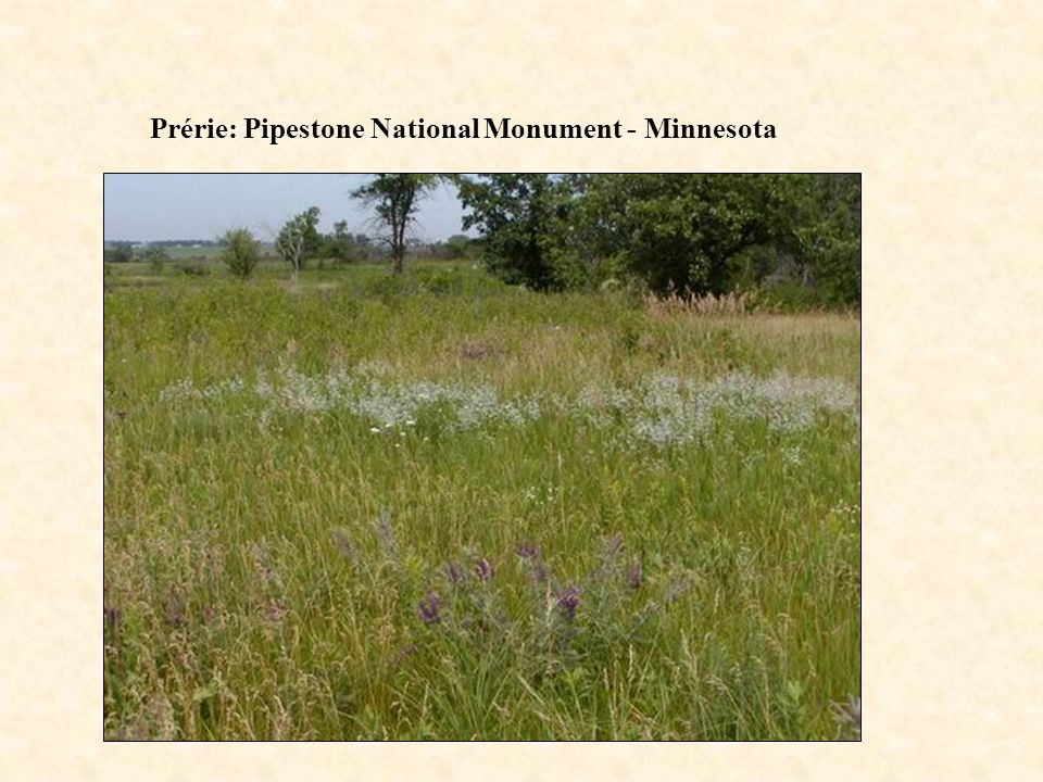 Prérie: Pipestone National Monument - Minnesota