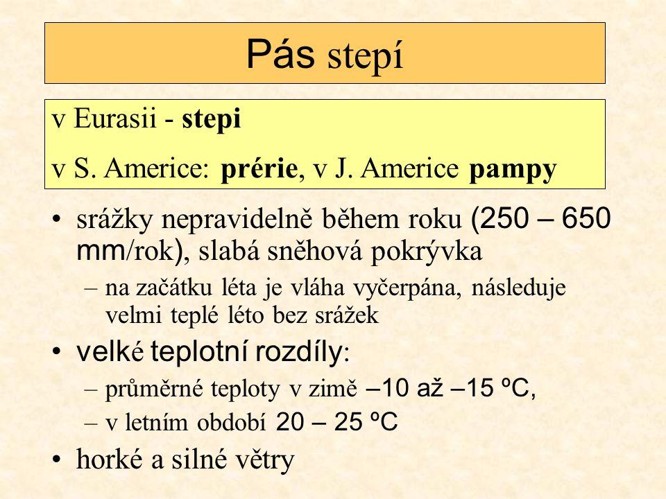 Pás stepí v Eurasii - stepi v S. Americe: prérie, v J. Americe pampy