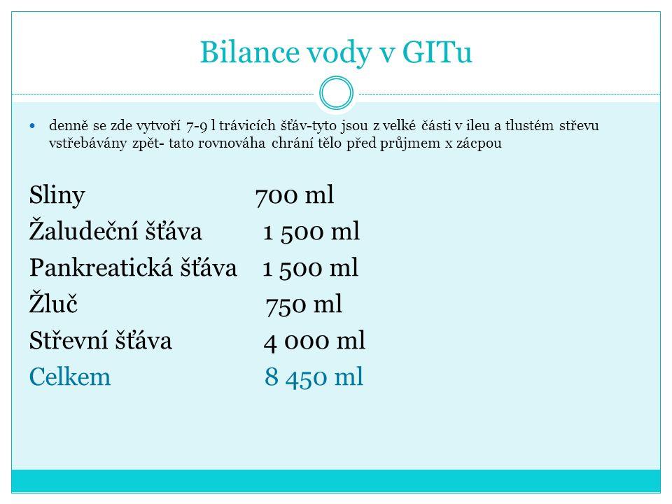 Bilance vody v GITu Sliny 700 ml Žaludeční šťáva 1 500 ml