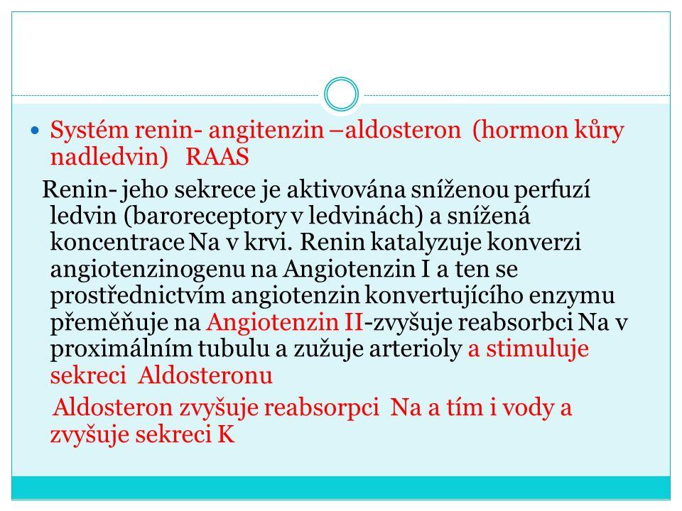 Systém renin- angitenzin –aldosteron (hormon kůry nadledvin) RAAS