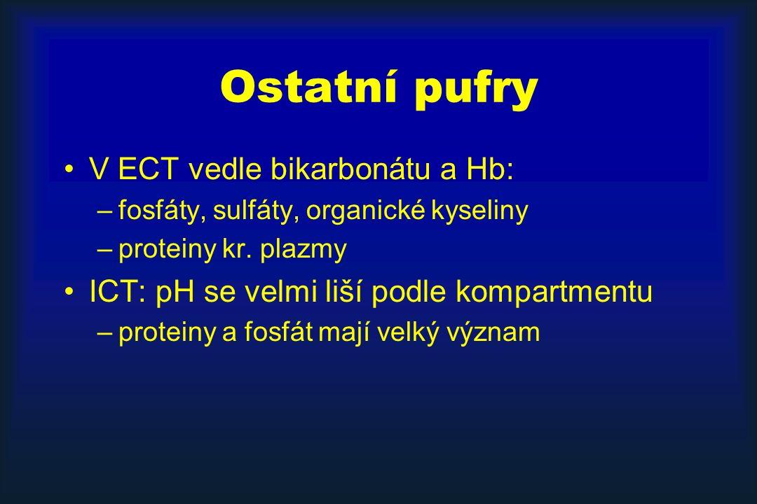 Ostatní pufry V ECT vedle bikarbonátu a Hb: