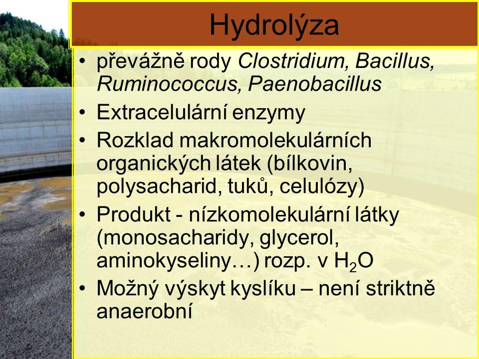 Hydrolýza převážně rody Clostridium, Bacillus, Ruminococcus, Paenobacillus. Extracelulární enzymy.