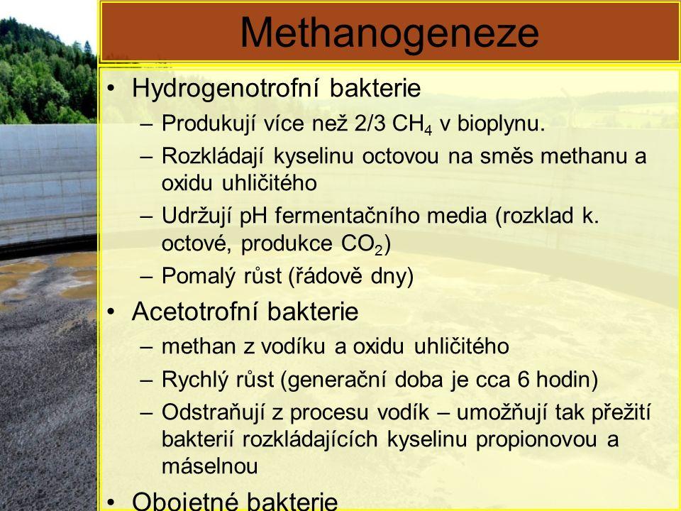 Methanogeneze Hydrogenotrofní bakterie Acetotrofní bakterie