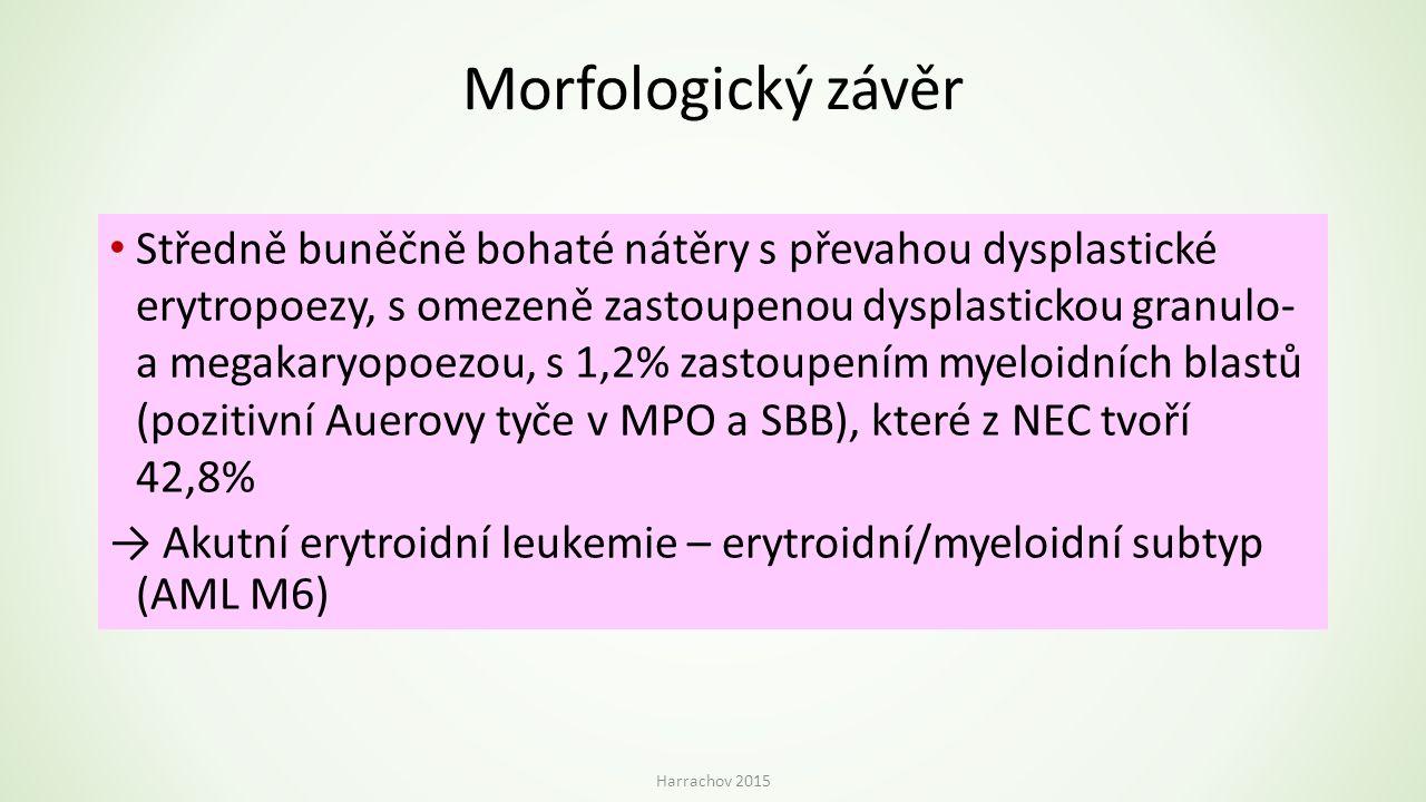 Morfologický závěr