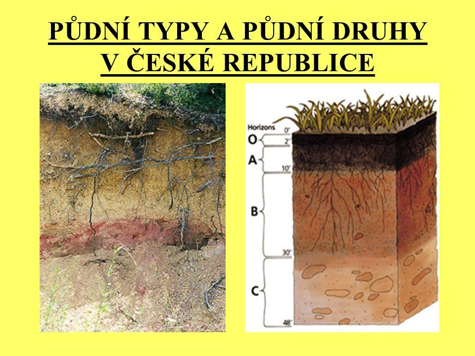 PŮDNÍ TYPY A PŮDNÍ DRUHY V ČESKÉ REPUBLICE