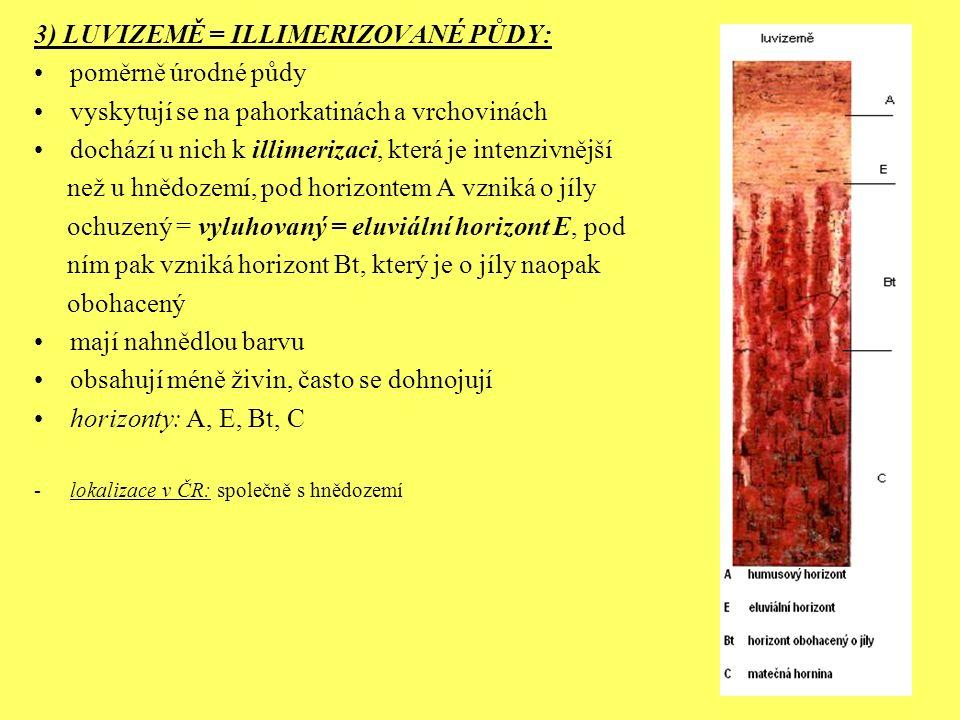 3) LUVIZEMĚ = ILLIMERIZOVANÉ PŮDY: poměrně úrodné půdy