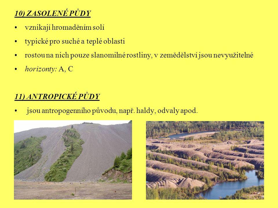 10) ZASOLENÉ PŮDY vznikají hromaděním solí. typické pro suché a teplé oblasti.