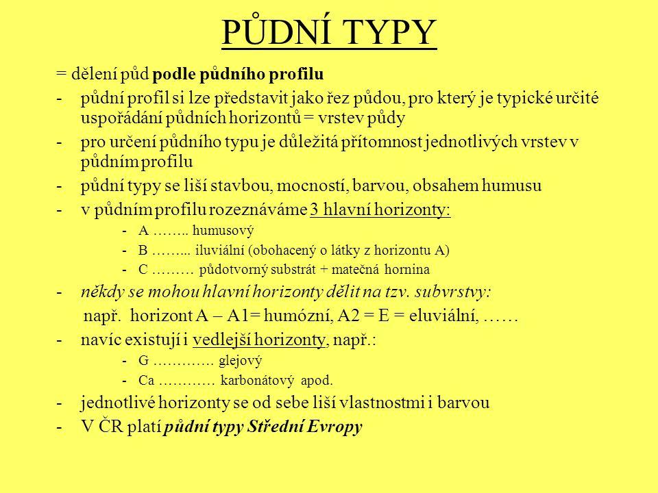 PŮDNÍ TYPY = dělení půd podle půdního profilu