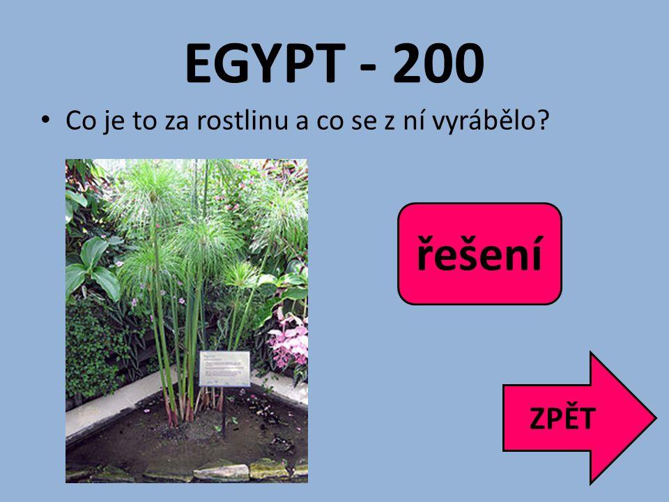 EGYPT - 200 řešení Papyrus, papír ZPĚT