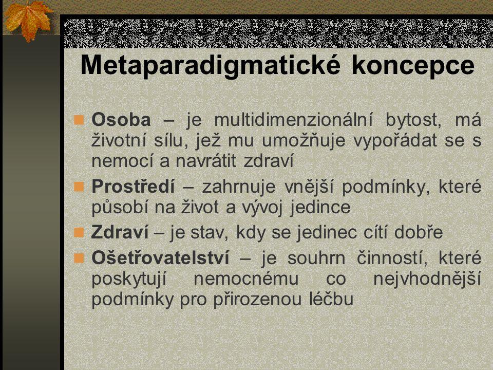 Metaparadigmatické koncepce