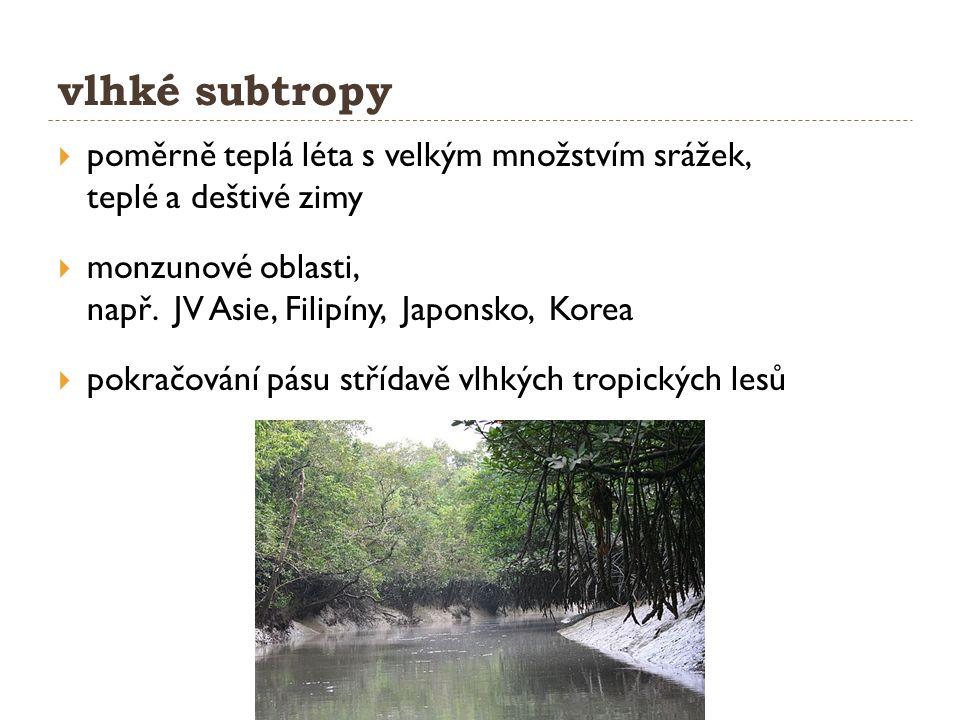 vlhké subtropy