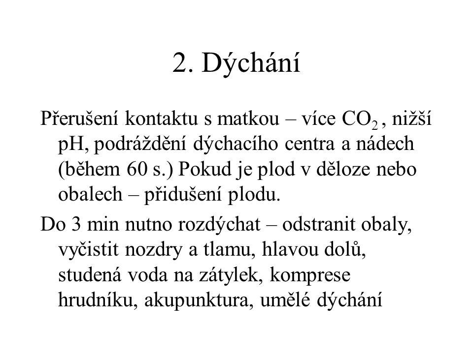 2. Dýchání