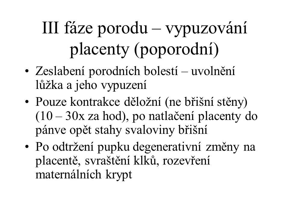III fáze porodu – vypuzování placenty (poporodní)