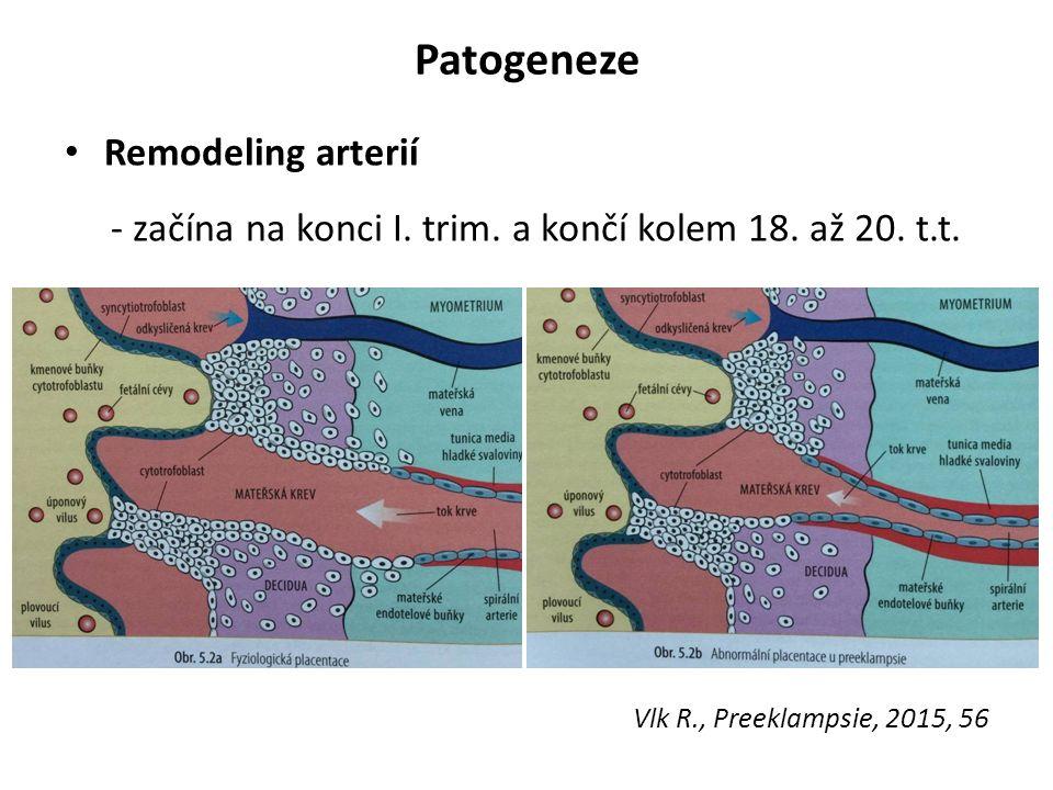 Patogeneze Remodeling arterií
