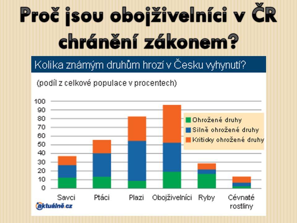 Proč jsou obojživelníci v ČR