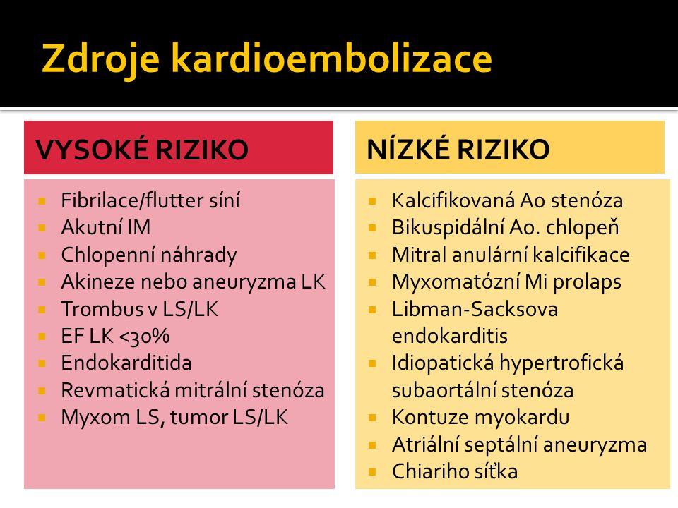 Zdroje kardioembolizace