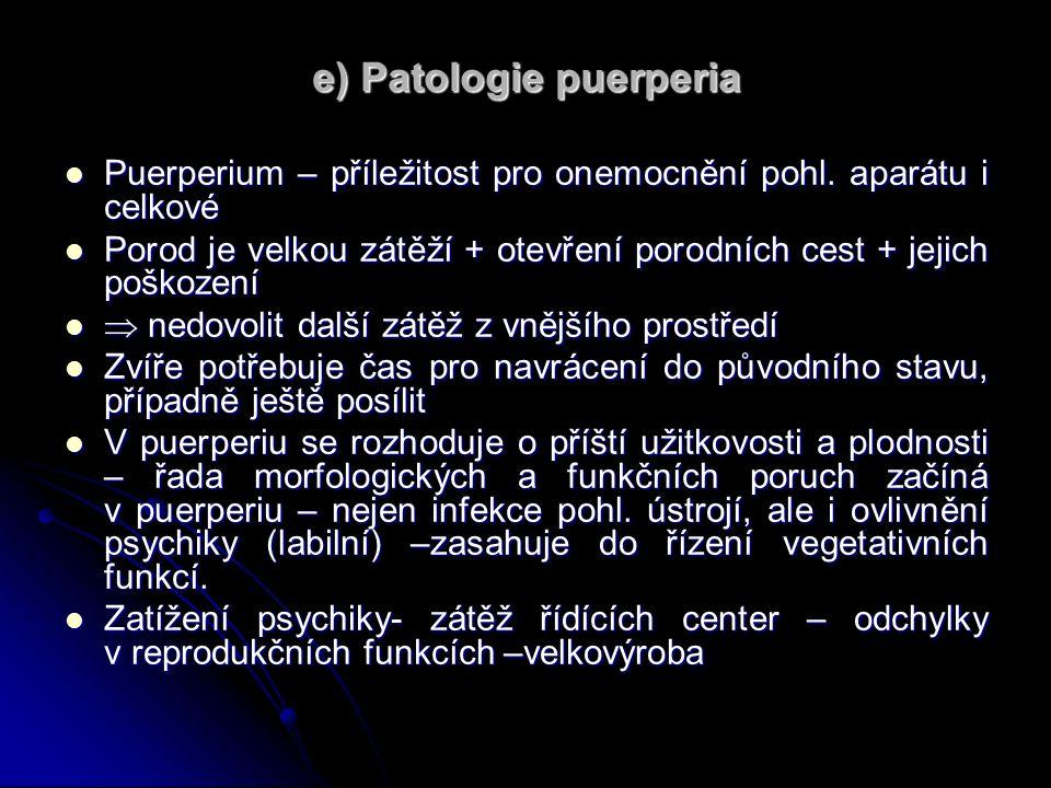 e) Patologie puerperia