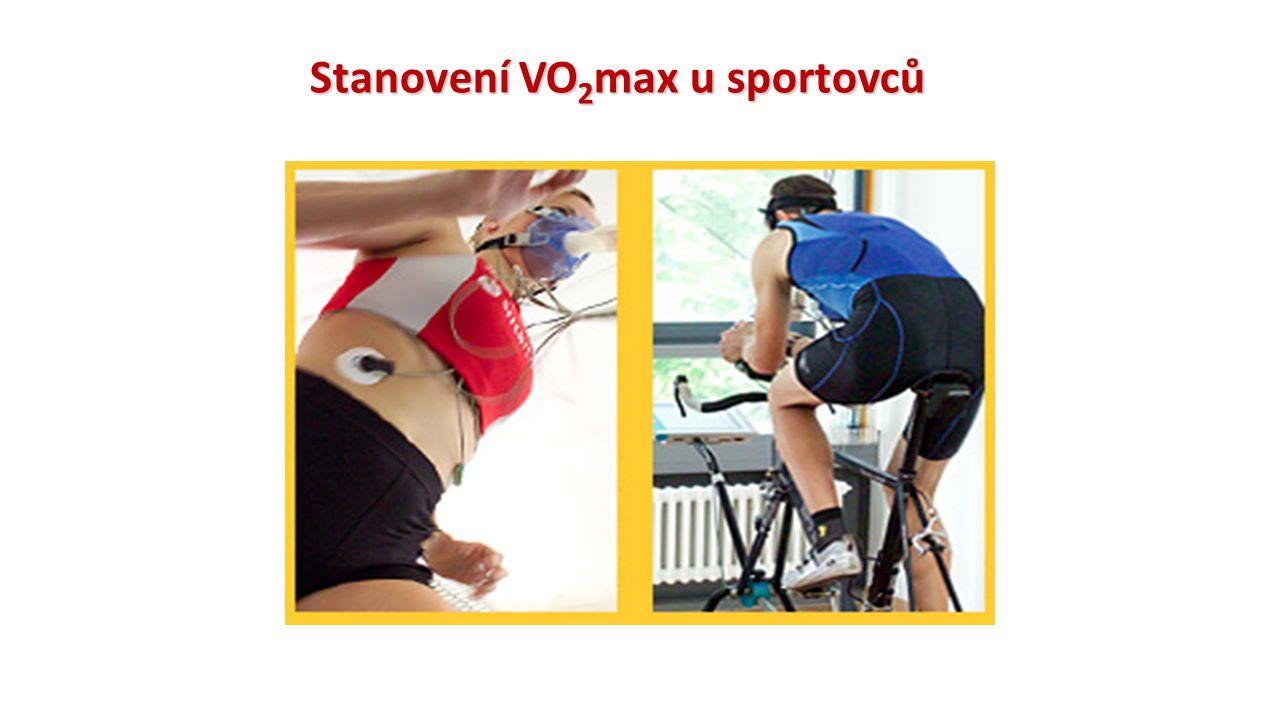 Stanovení VO2max u sportovců
