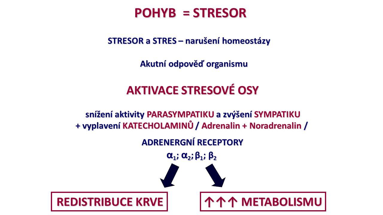 POHYB = STRESOR ↑↑↑ METABOLISMU α1; α2; β1; β2